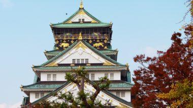 Япония — клёны мимодзи